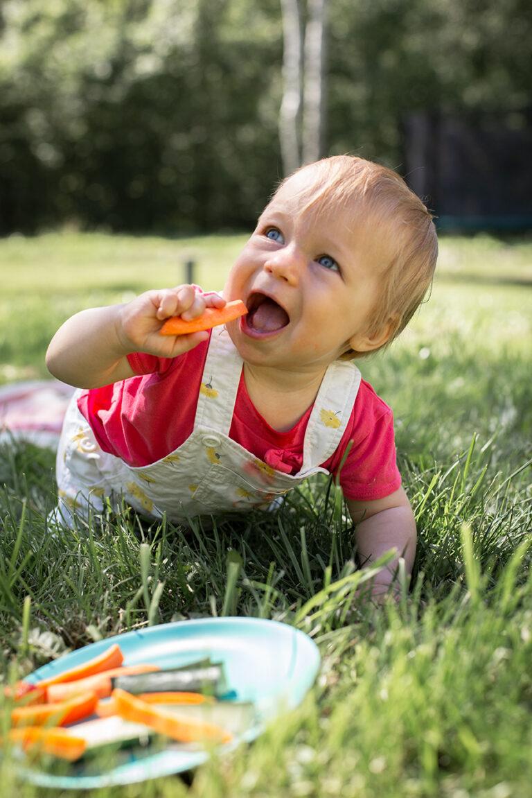Miks anda beebile sügavkülmutatud toitu?