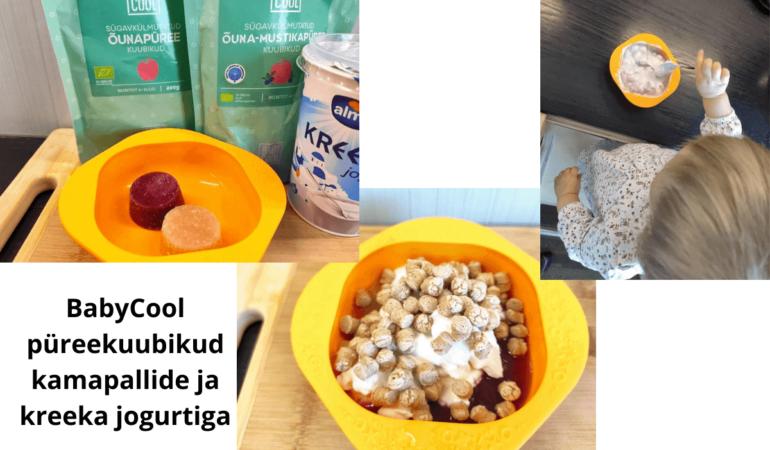 BabyCool püreekuubikud kamapallide ja kreeka jogurtiga